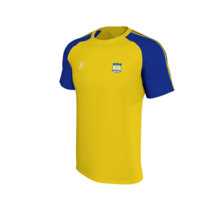 Carew Park FC Elite T shirt Yellow-0