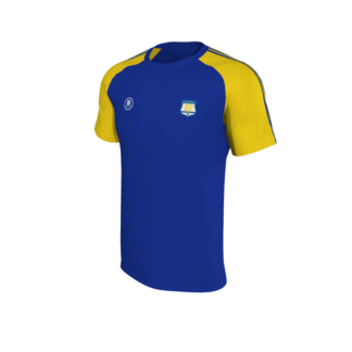 Carew Park FC Elite T shirt Blue-0